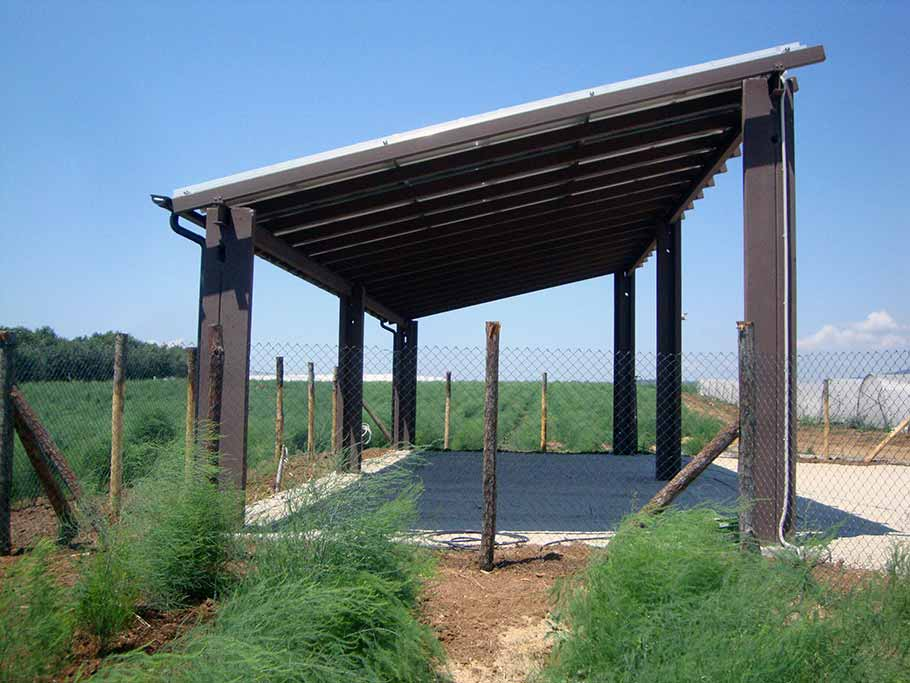 capannoni agricoli (2)