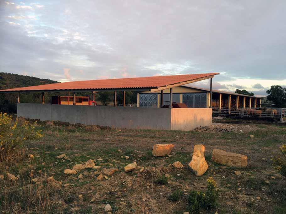 capannoni agricoli (8)